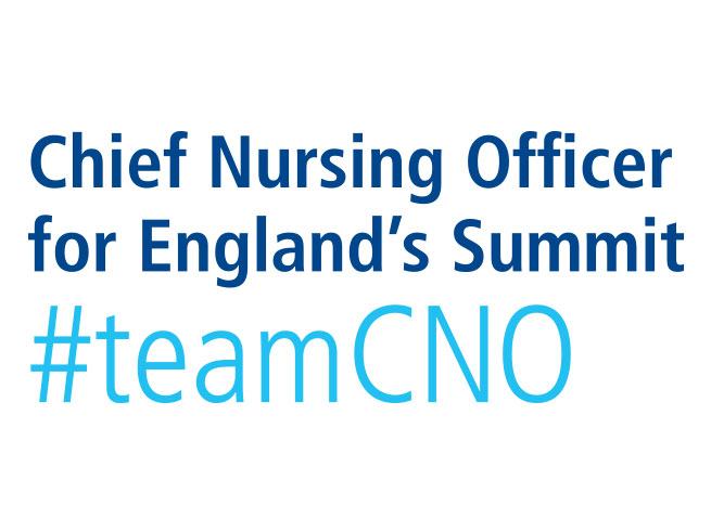 Chief Nursing Officer Summit